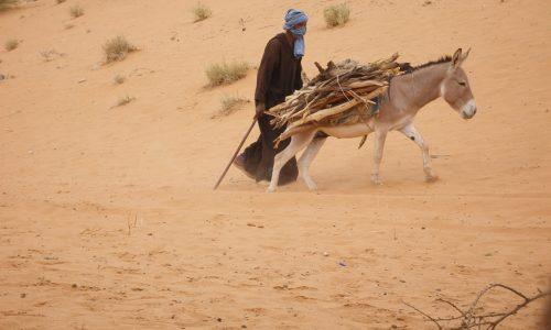 14-Mauritanie-climat-photo-1