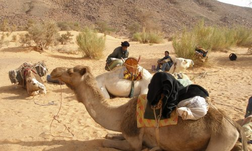 15-Mauritanie-climat-photo-2